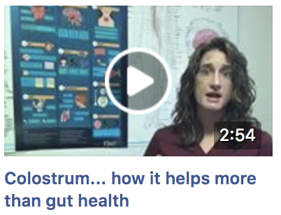 Colostrum for IBS